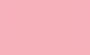 BD Background Paper Pastel Pink 1.35x11m